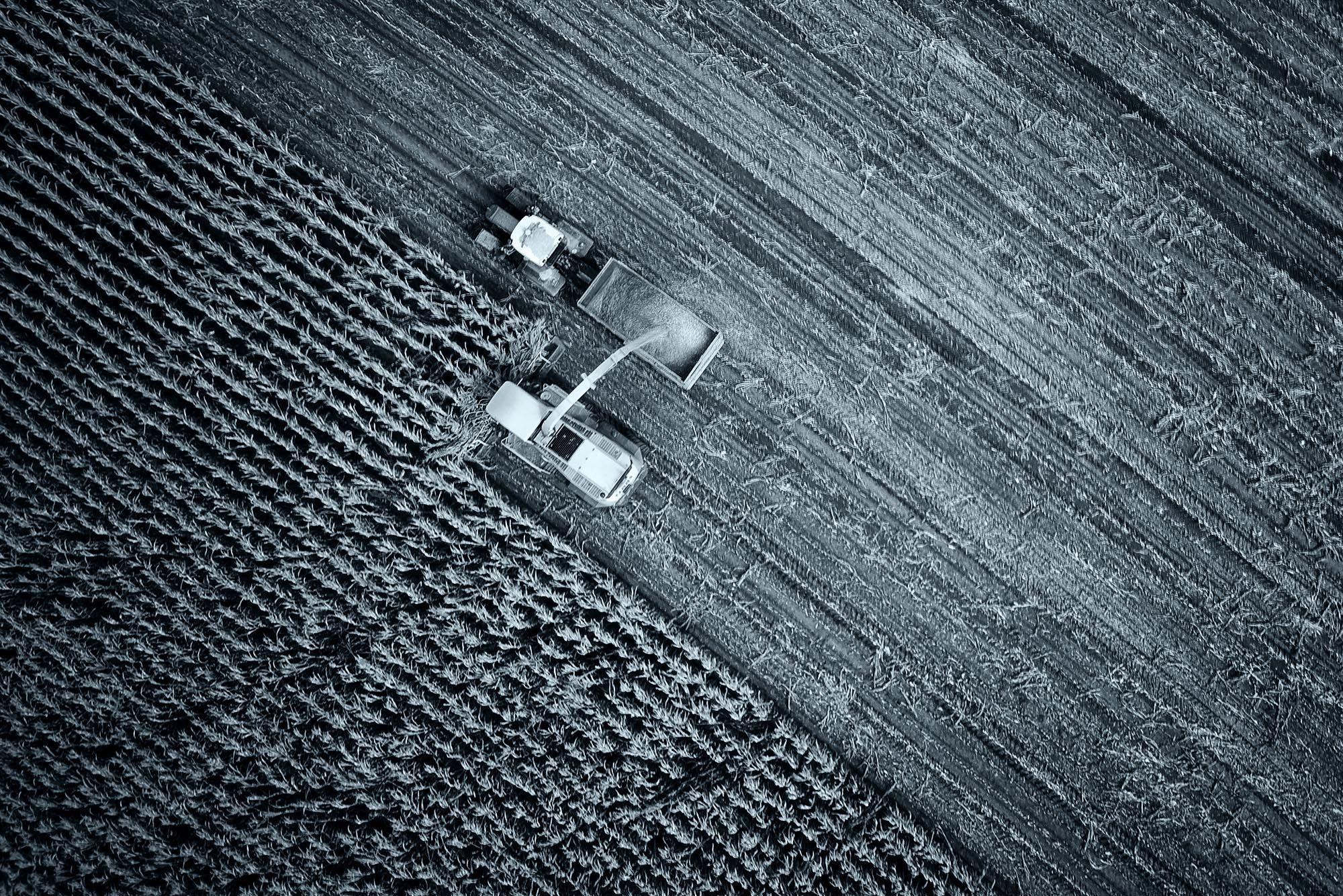 Dron dla rolnictwa